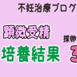 """<span class=""""title"""">顕微受精 採卵から3日目</span>"""