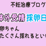 "<span class=""title"">体外受精の採卵日当日</span>"
